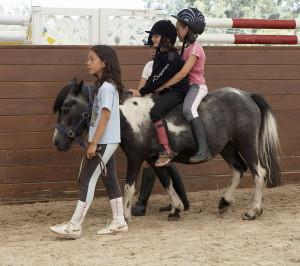 Pony Parque